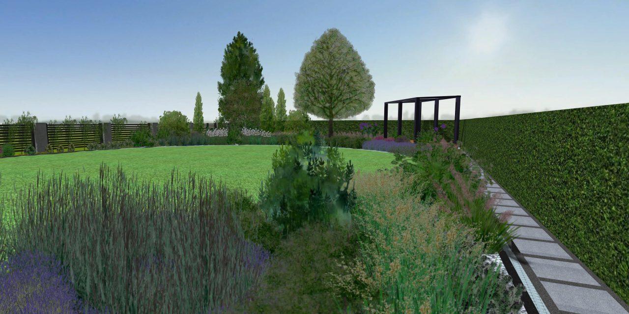 Ogród latem - widok ze ścieżki